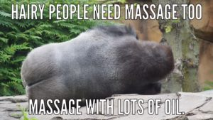 IMG_3031-300x200 5 Things Massage Therapists Hear All The Time