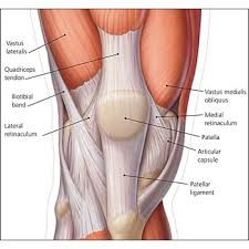 blogpic.anterior-knee Patellofemoral Pain Syndrome